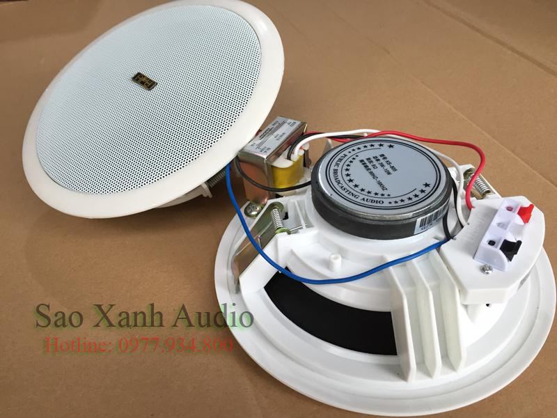 Loa âm trần APU KS805 chuyên dùng cho nghe nhạc tại Sao Xanh Audio