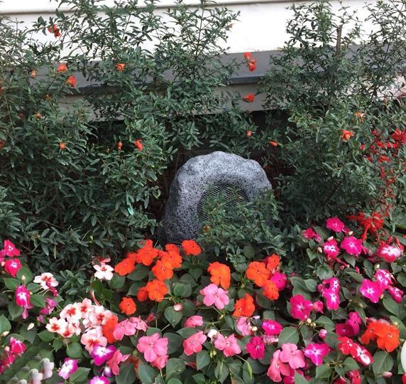 Loa sân vườn DSP 647 kiểu dáng đẹp, âm thanh cực hay